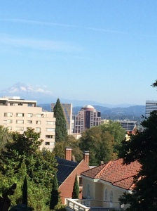 The nice, compact city of Portland. That's Mt. Hood in the background.